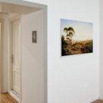 Land Art dal Terrazzo (11)